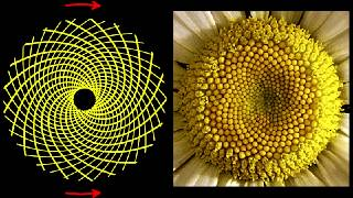 Occult Teachings, Hidden Knowledge, Unifying Consciousness