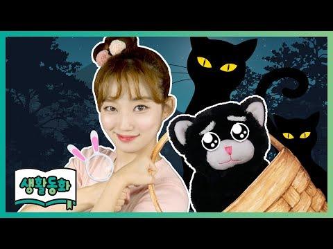 [생활동화] 명탐정 루시, 사라진 나비의 가족을 찾아라! | CarrieTV_Books