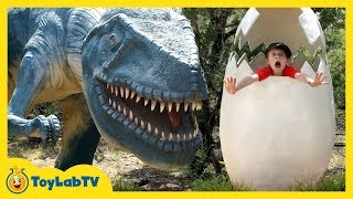 Dinosaur World Giant Life Size Dinosaurs Jurassic Theme Park with Family Fun Activities & Kids Toys