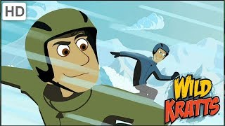 Wild Kratts - Getting Ready for The New Year in The Wild