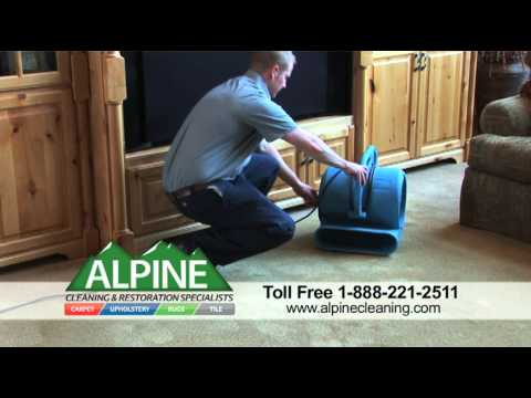 Carpet Cleaning by Alpine Cleaning & Restoration