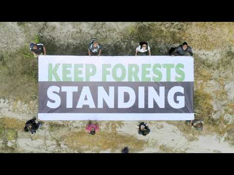 Keep Forests Standing
