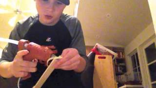 How to make a fly swatter gun