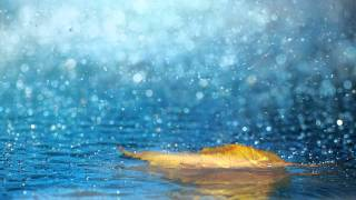 melodic-dubstep-bxdn-raindrops.jpg