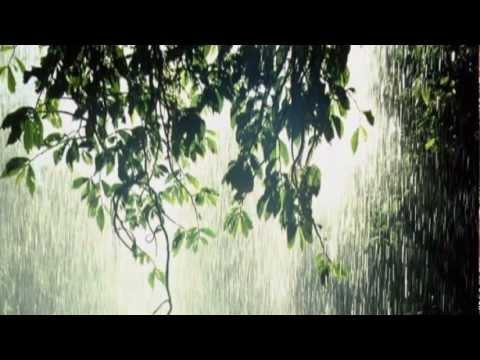 Video 2012-3-249 Autumn music /14 JESSICA JAY