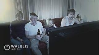 Tag, TV-Dokus, Walulis sieht fern, 2013