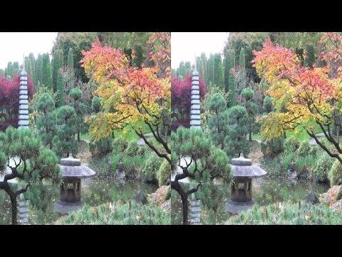 3D - Bonn - Japanischer Garten