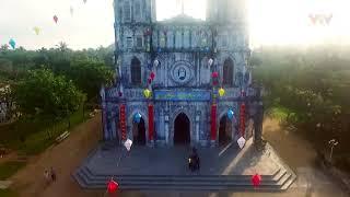 Cảnh đẹp Phú Yên - Việt Nam - Hoa vàng trên cỏ xanh