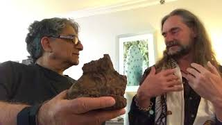 Origins of Life and Consciousness : A conversation with Bruce Damer  www damer