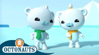 Octonauts - The Walrus Pups | Cartoons for Kids | Underwater Sea Education