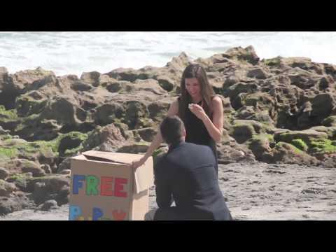 Tiffany & Darren's Puppy Proposal