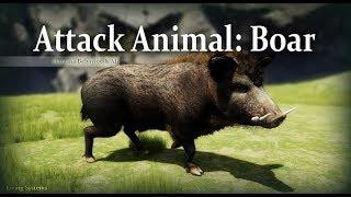 Attack Animal: Boar Demo