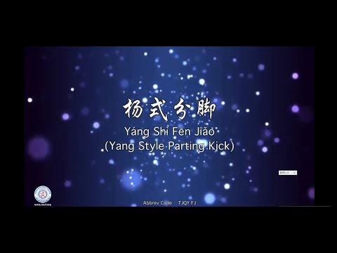 Yáng Shì Fēn Jiǎo(Yang Style Parting Kick)