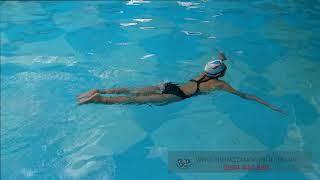 Dạy Bơi Bướm - Hướng Dẫn Chỉnh Sửa Chi Tiết Các Lỗi Trong Bơi Bướm