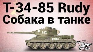 Т-34-85 Rudy - Собака в танке!