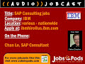 What does an SAP Consultant do?