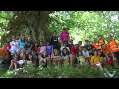 Campamentos de verano en El Bierzo
