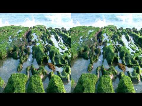 HDClub - Laomei Green Reef 3D