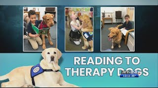 Therapy Dog Day