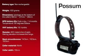 Watch video - GPS Collar for Possum