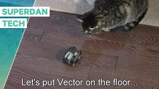 Anki Vector | Let's put Vector on the floor!