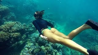 Подводная охота blue water spearfishing Panama part 2.Желтоперый тунец