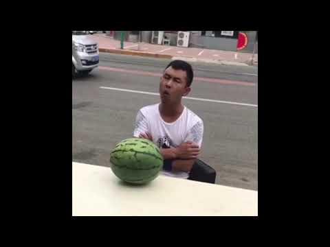 lustige Videos