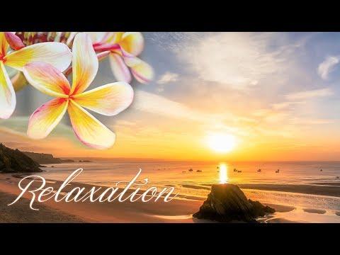 アロマ リラクゼーション音楽 ~スパ、瞑想・ヨガ、睡眠~南国風・トロピカル、波の音とカモメの声etc... 疲れが取れる癒しのヒーリングBGM