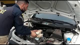 PRF apreende 263 mil reais sem procedência escondidos no capô de um carro, na BR-392, em Pelotas