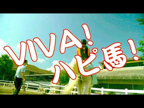 「VIVA!ハピ馬」オメでたい頭でなにより - Music Video|