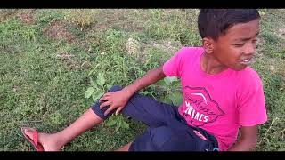 Very Funny Video - Comedy Video 2019 - Busy Fun Ltd
