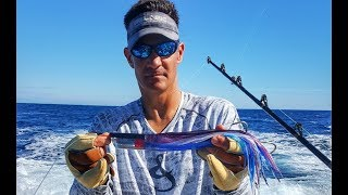 Marlin Trolling Lures and Spread Setup In The Spread
