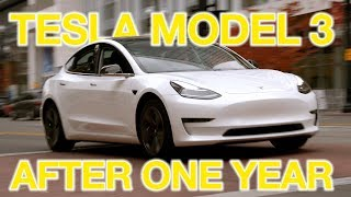 The TRUTH About Tesla Model 3 After 1 Year...