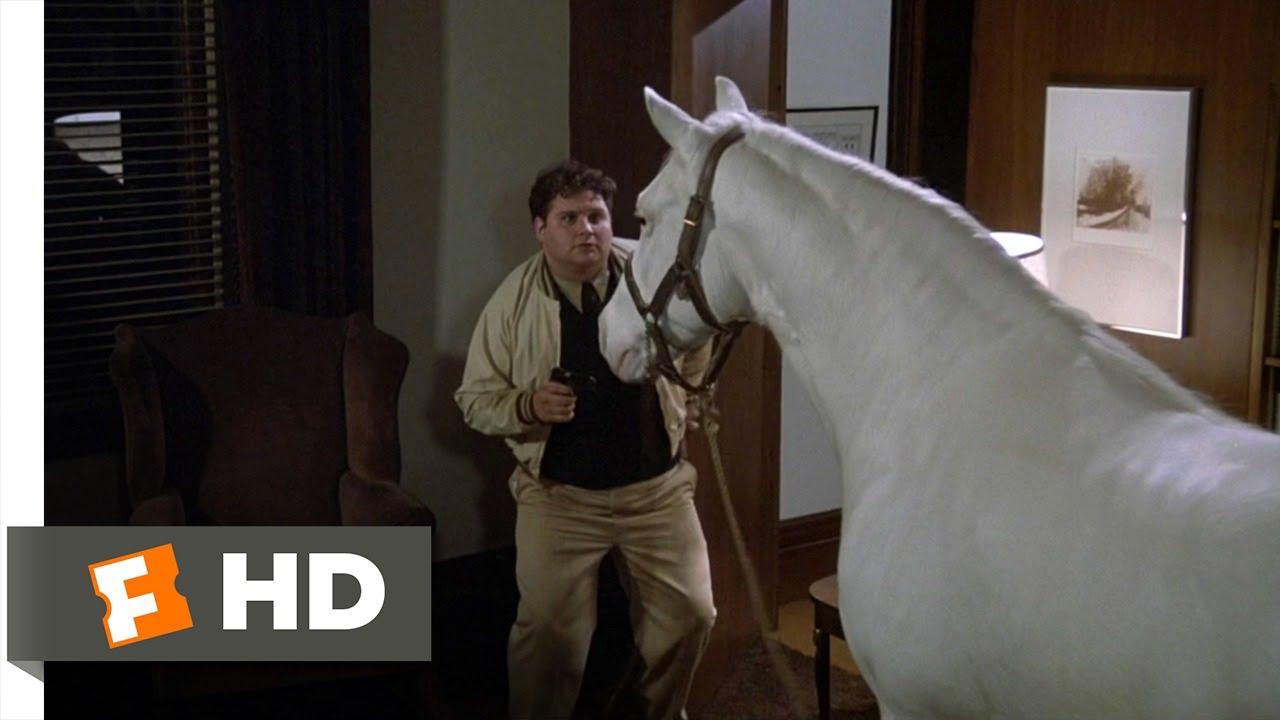 Flounder Gets Even Animal House 4 10 Movie Clip 1978