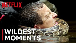 Bear's WILDest Moments 🤯 Animals on the Loose: A You vs Wild Movie | Netflix Futures