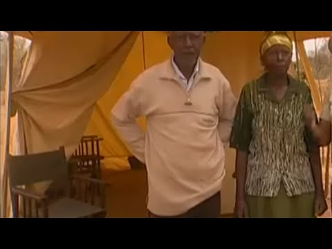 Shamba Shape Up (English) - Flying Gardens, Mango Farming, Cow Farming