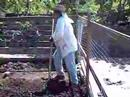 Como preparar el terreno para una hortaliza organica