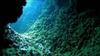 Bajo de Dentro-Cabo de palos. Aguilas de Mar