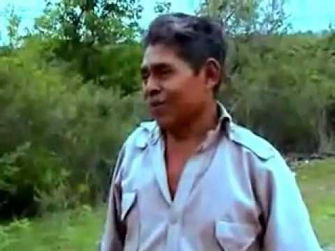 TRIO ARMONIA HUASTECA - LA AZUCENA , EL RANCHERO, ATARDECER HUASTECO