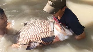 Top 5 Unbelievable Fisherman vs. River Monsters