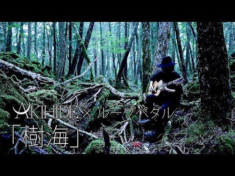 【生演奏】AKIHIDE × ループペダル #1.「樹海」