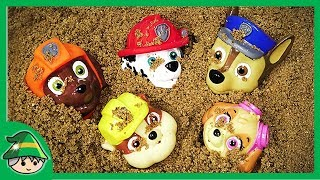 Paw Patrol bath toys with play sand to play water. Learning Kids Color
