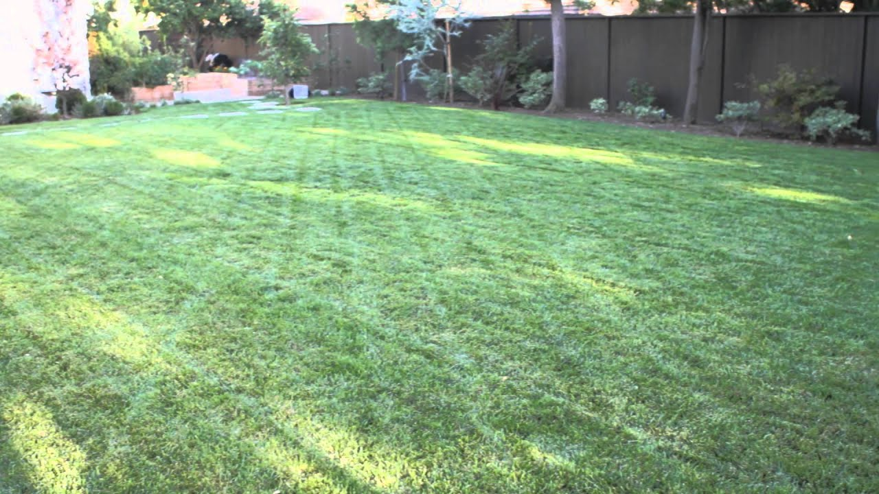 How to Landscape a Big Backyard : Landscaping & Garden ...