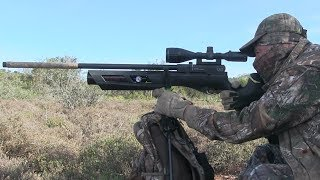 Umarex Gauntlet  22 - FULL REVIEW - Airgun Exploration