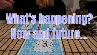 PICK A CARD ** What's happening now and in the future? ** (Timeless)