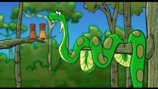 The Green Anaconda Song