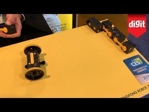 PingPong Robot by Robo Risen - The Lego for Robotics