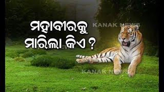 Tiger Mahavir Death Mystery