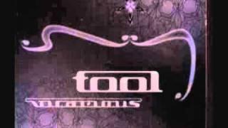 Tool - Vicarious Drum Track