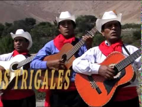 06 Trío Los Trigales - El criticón